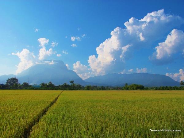 ChiangDao copy